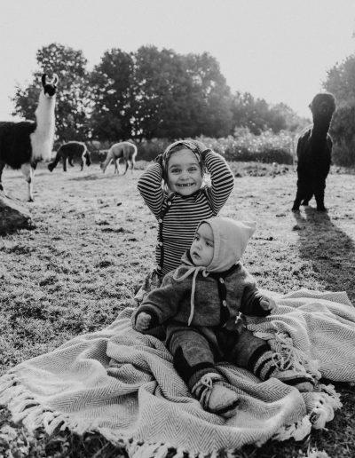 Familienfotoshooting mit Alpakas